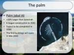 the palm2