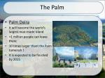 the palm4