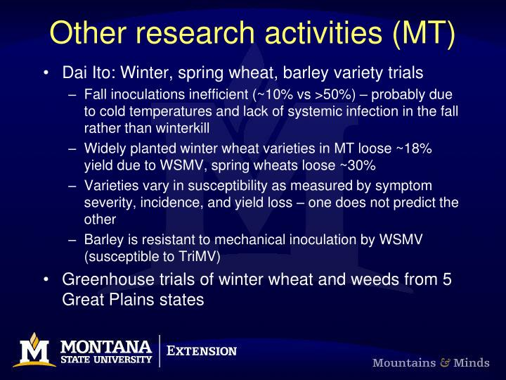 Other research activities (MT)