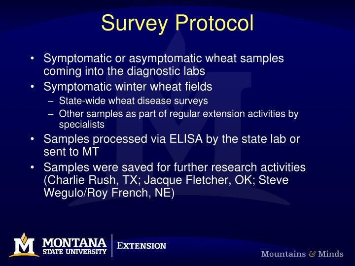 Survey Protocol