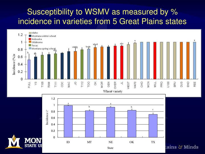 Susceptibility to WSMV as measured by % incidence in varieties from 5 Great Plains states