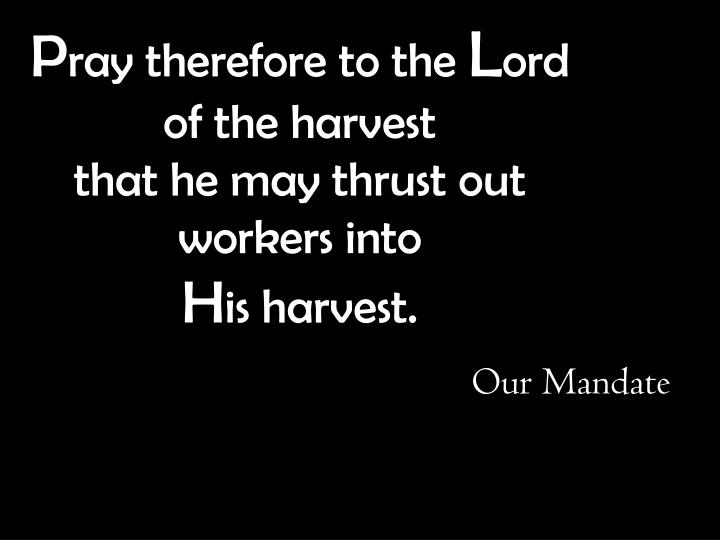 p ray therefore to the l ord of the harvest that he may thrust out workers into h is harvest n.