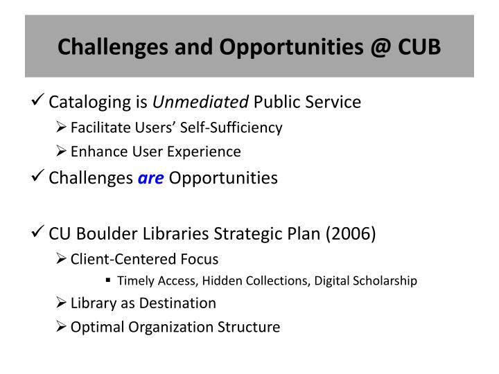 Challenges and Opportunities @ CUB