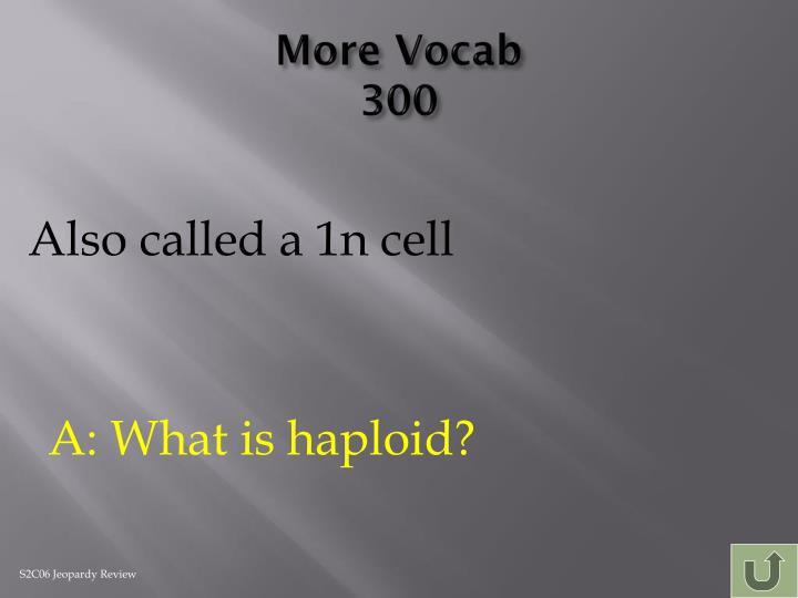 More Vocab