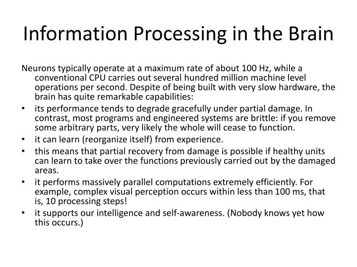 Information Processing in the Brain