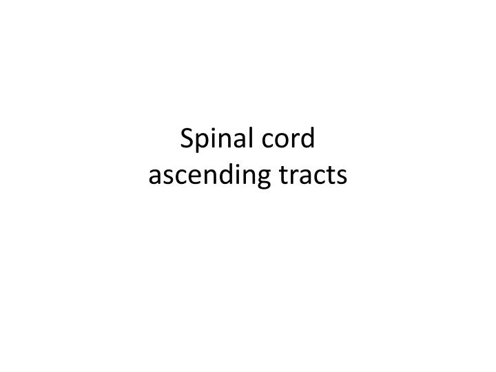 spinal cord ascending tracts n.
