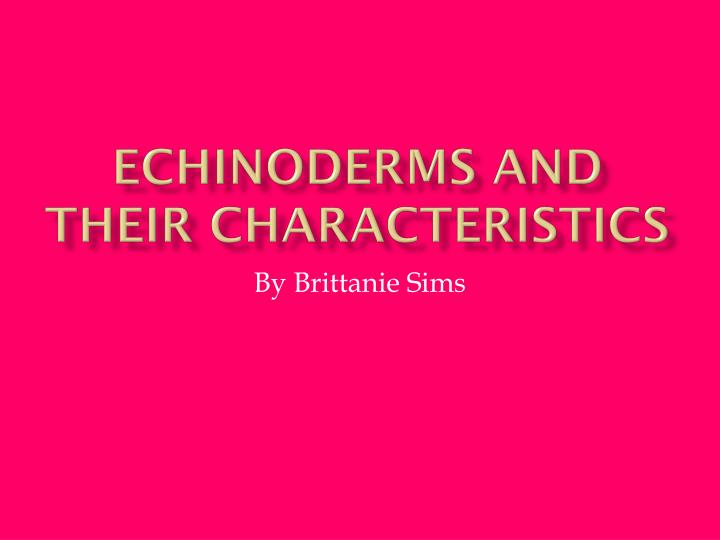echinoderms and their characteristics n.