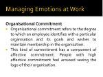 managing emotions at work13