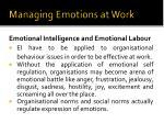 managing emotions at work14