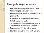 how gadspwsync operates
