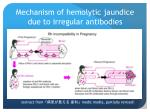 mechanism of hemolytic jaundice due to irregular antibodies
