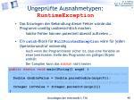 ungepr fte ausnahmetypen runtimeexception1