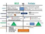 b12 vs folate