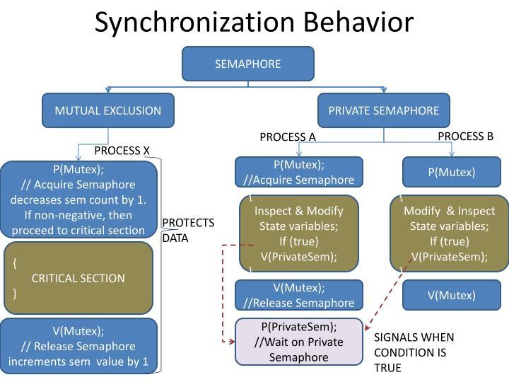 Synchronization Behavior