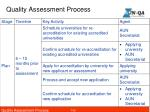 quality assessment process1