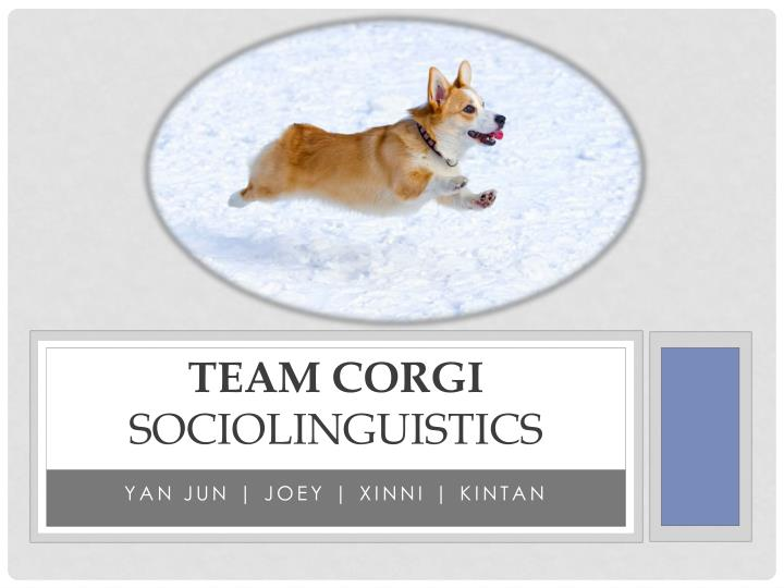 Team corgi sociolinguistics