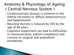 anatomy physiology of ageing central nervous system