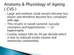 anatomy physiology of ageing cvs
