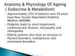 anatomy physiology of ageing endocrine metabolism1