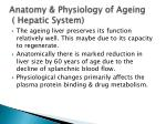 anatomy physiology of ageing hepatic system