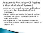 anatomy physiology of ageing musculoskeletal system