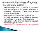 anatomy physiology of ageing respiratory system3