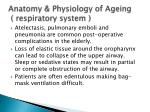 anatomy physiology of ageing respiratory system4