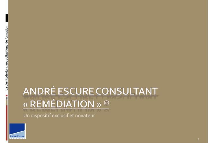 Andr escure consultant rem diation