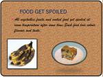 food get spoiled