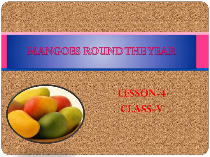 mangoes round the year n.