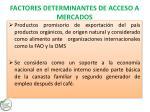 factores determinantes de acceso a mercados