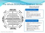 the whole brain four quadrant model