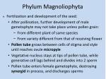phylum magnoliophyta5