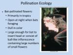 pollination ecology4