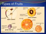 types of fruits1