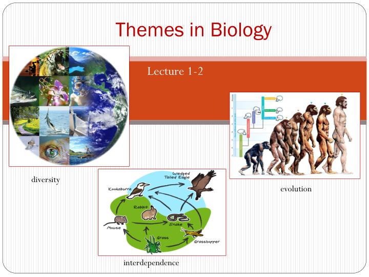 themes in biology n.