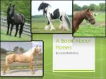 a book about horses