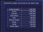 estimated combat fatalities in the great war