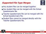 supported file type merges
