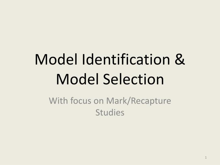 model identification model selection n.