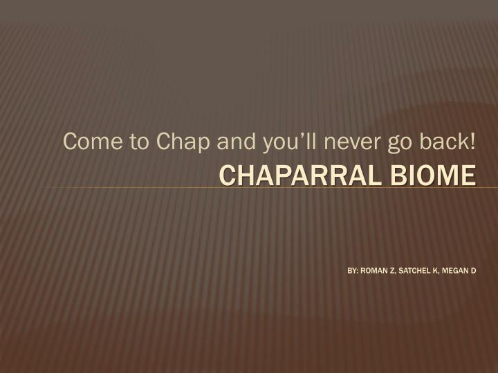 Come to Chap and you'll never go back!
