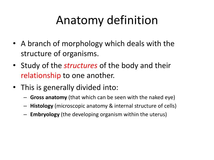 PPT - Introduction Anatomy PowerPoint Presentation - ID:2086542