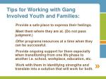tips for working with gang involved youth and families