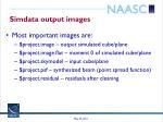 simdata output images