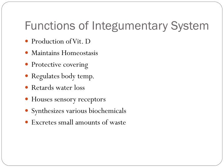 Functions of integumentary system