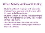 group activity amino acid sorting