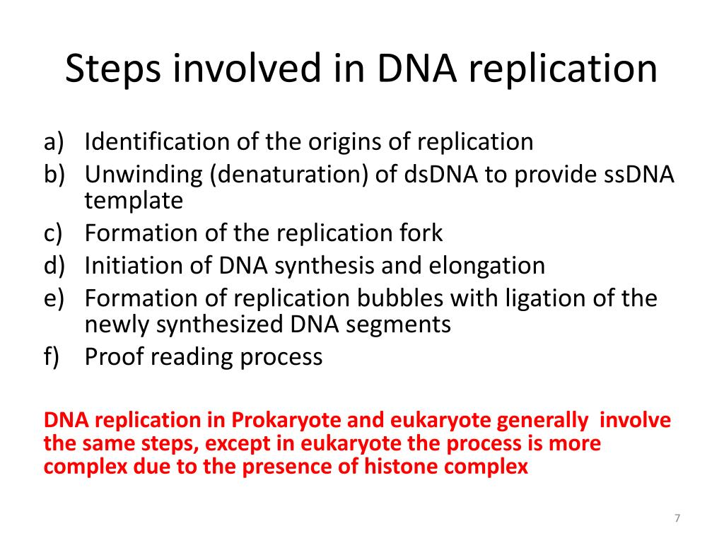 Ppt Replication Of Dna Powerpoint Presentation Free Download Id 2087118