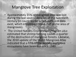 mangrove tree exploitation