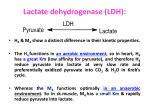 lactate dehydrogenase ldh2