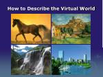 how to describe the virtual world